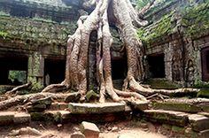 Angkor Tour Guide: One Day Tour + Banteay Srei