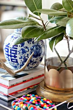 coffee table styling via @dimplestangles