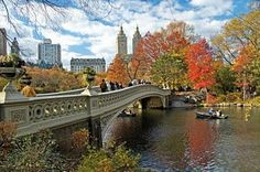 New York City in autumn. Yes please.