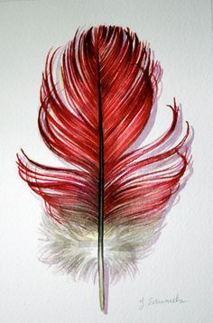 Done with watercolor, beautiful! By Jody Edwards.  As a tattoo, this would incorporate my mums guardian angel sign of a feather and mine of a robin