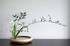 Risultati immagini per ikebana arte floral japones Ikebana Arrangements, Ikebana Flower Arrangement, Modern Flower Arrangements, Flower Vases, Cactus Flower, Arte Floral, Exotic Flowers, Beautiful Flowers, Purple Flowers