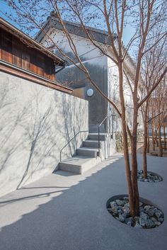 Gallery of Courtyard for Yamaguchi Sake Brewery / CASE-REAL - 18