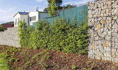 gabionove ploty - Hľadať Googlom