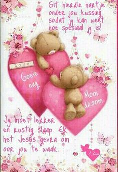 Good Night Sleep Tight, Evening Greetings, Afrikaanse Quotes, Goeie Nag, Goeie More, Good Night Quotes, Day Wishes, Gratitude Journals, Motivational