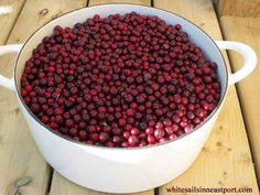 Partridgeberries~ I remember these~ My favourite jam Partridgeberry and Apple Jam!!!!