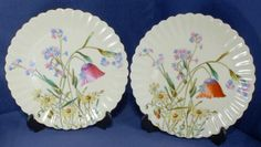 Pair of Hand Painted Floral Study Plates by Bodley C.1870 a/f