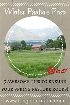 3 great tips to ensure your pasture grows back healthy and FAST this spring…