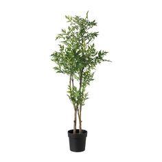IKEA - FEJKA, Plante artificielle en pot, Plante artificielle qui apporte une touche de fraîcheur année après année.