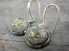 Ohrringe mit echten getrockneten Blüten von der wilden Möhre.  Die Blüten sind in hellgrauem Glasharz eingegossen. Silberfarbene Fassung mit leic...