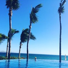 One & Only Palmilla in Cabo Mexico. Great destination wedding location and family vacation destination. Best Vacation Destinations, Destination Wedding Locations, One And Only, Cabo, Places To Visit, Mexico, Beach, Water, Travel