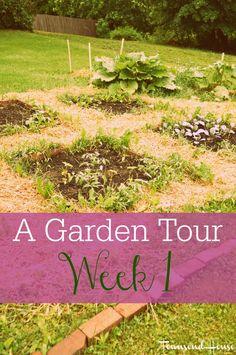 Townsend House: A Garden Tour - Week One