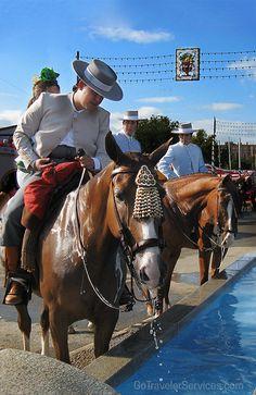 Horses refresh themselves at a public watering trough during Seville's April Fair. /// Caballos refrescándose en un abrevadero preparado para ellos durante la Feria de Abril de Sevilla.