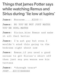 THIS TOTALLY HAPPENED. LMAOOOO I LOVE JAMES AND WOLFSTAR HEADCANONS