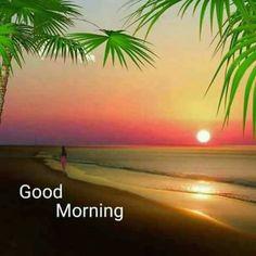 Good Morning Nature Images, Latest Good Morning Images, Good Morning Beautiful Pictures, Beautiful Morning Messages, Good Morning Images Flowers, Good Morning Picture, Morning Pictures, Good Morning Sunrise, Good Morning Photos Download