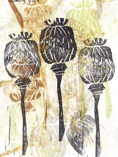 charcoal poppy seed heads drawings - Google Search
