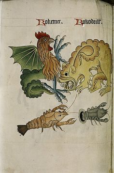 All sizes   Cockatrice and Crocodile. Dragon with human head in mouth. Crayfish., via Flickr.