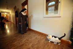 Sister St. John calls to Muffin, the monastery cat, inside the Monastery of the Blessed Sacrament