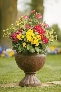 Overplant Containers With Bold Colors / Armstrong Garden Centers