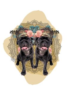 Horóscopo Canino #Revista #SeBuscaPerroExtraordinario