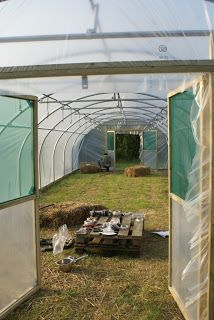 Polytunnel construction from a customer's perspective - Part 6: Covering