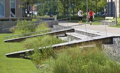 Salem State University, Marsh Hall | Landscape Architect: H. Keith Wagner Partnership | Architect: Dimella Shaffer | Image Credit: Westphalen Photography | This residential hall project is located adjacent to a sensitive tidal salt marsh. Stormwater from the project is sent to a large, linear bio-swale with native grasses to be filtered and given the chance to percolate back into the ground.