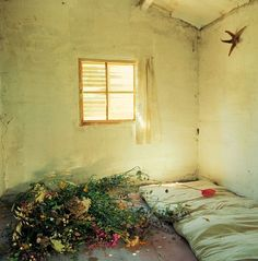 Bernard Faucon, Les chambres d'amour