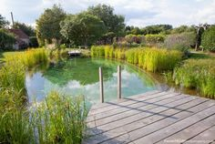 Explore our Swimming Pond and Natural Swimming Pool gallery, showcasing the…