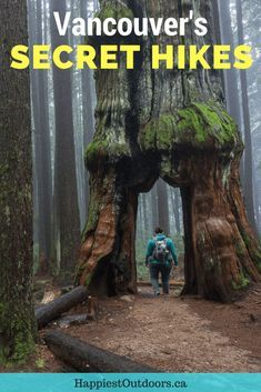Secret hikes near Vancouver, BC, Canada. 15 Unusual Hikes Near Vancouver. Off the beaten path hikes in Vancouver. Weird places to hike near Vancouver. #hiking #Vancouver #Canada
