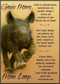 Good Morning Wishes, Good Morning Quotes, Animal Poems, Afrikaanse Quotes, Goeie Nag, Goeie More, Cute Baby Animals, Positive Quotes, Verses