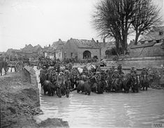 235th Brigade (47th Divisional Artillery) watering their horses in captured Flesquieres, 24 November 1917. Imperial War Museum image Q6320.