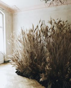 Cool and unique winter wedding styling, foliage and decor. Floral Style, Floral Design, Flower Installation, Artistic Installation, Arte Floral, Art And Architecture, Dried Flowers, Flower Arrangements, Design Art