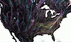 This interactive map shows how animals will migrate globally, in response to climate change. The map shows the average direction mammals, birds… Especie Animal, Bird Migration, Interactive Map, Us Map, Life Drawing, Data Visualization, Global Warming, Climate Change, Habitats