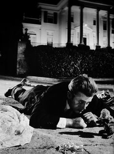 Rebel Without a Cause; the opening scene with Jimmy and the monkey always gets my heart. Not sure exactly why, just does