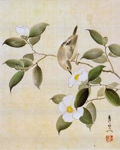 Bird on White Camellia. Suzuki Kiitsu. Japanese painting. Nineteenth century. Rinpa School. Hosomi Museum. 白椿に鶯図 鈴木其一筆 一幅 江戸時代後期 細見美術館