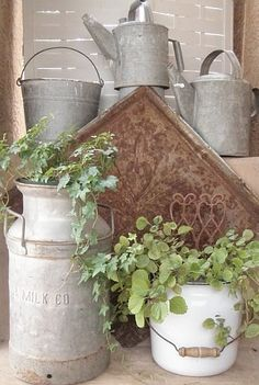 love old watering cans...