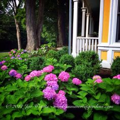 A front yard garden design for a Victorian Home in Warwick, NY.  i took this photo 12 months after the installation.   Garden design and construction services in the NJ and NY areas.  845-590-7306  Summerset Gardens Elegant Landscape Design, Fine Workmanship   http://summersetgardens.com  Info@summersetgardens.com