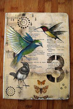 bird journal by Helen Wheeler-Shaw, via Flickr
