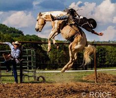 Cowgirls and Cowboys Ω Rodeo Cowboys, Real Cowboys, Cowboy Photography, Animal Photography, Bareback Riding, Rodeo Events, Rodeo Time, Horse Anatomy, Draw On Photos