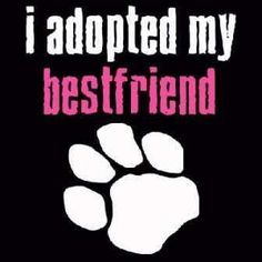 Yep!! | They are more than my best friends. They are my babies and have all of my heart! :)