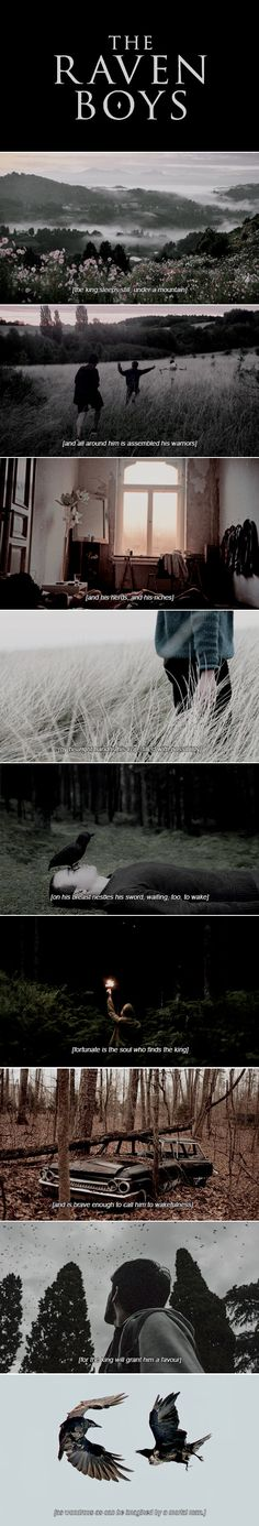 "The Raven Boys // ""Henrietta is quite a place."""