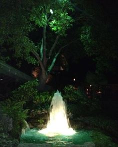 This beautiful outdoor fountain setting at a resort in Texas is illuminated with a combination of halogen underwater lighting and mercury vapor moonlighting from the surrounding trees.  #houstonlandscapelighting