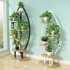 Living room household flower shelf, multi-storey indoor balcony iron round shelf, decorative green lotus pendant orchid shelf - Gardening for beginners and gardening ideas tips kids Garden Shelves, Plant Shelves, Indoor Balcony, Indoor Plants, House Plants Decor, Plant Decor, Garden Rack, Round Shelf, Balcony Flowers