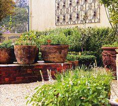 Open Jardim e Varanda: Horta em vaso: você pode plantar