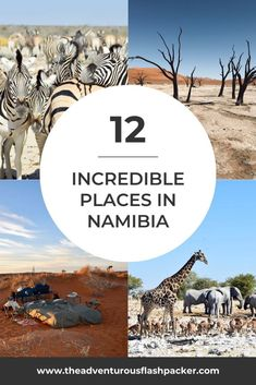 12 Incredible Places to Visit in Namibia - Landscapes, Wildlife & Hiking Ghana Travel, Morocco Travel, Africa Travel, Hawaii Travel, Italy Travel, Africa Destinations, Travel Destinations, Travel Tips, Travel Abroad