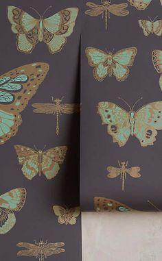 Lepidoptera Wallpaper #anthrofave