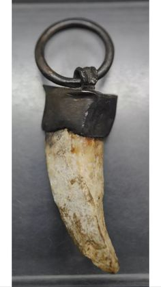 so maybe they need their tusks removed if they break code or something. Or if you defeat one of courseOkay, so maybe they need their tusks removed if they break code or something. Or if you defeat one of course Ancient Vikings, Norse Vikings, Early Middle Ages, Archaeological Finds, Viking Art, Anglo Saxon, Viking Jewelry, Dark Ages, Ancient Artifacts