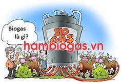 Biogas là gì?