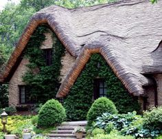 Crazy about thatched roof designs