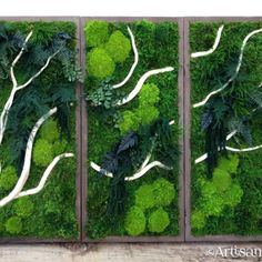 Artisan Moss A series of three, with white branches unifying the entire piece Moss Wall Art, Moss Art, Plant Painting, Plant Art, Moss Graffiti, White Branches, Vertical Garden Wall, Small Space Interior Design, Succulent Wall