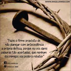 É permanecendo firmes que ireis ganhar a vida! http://liturgia.cancaonova.com/